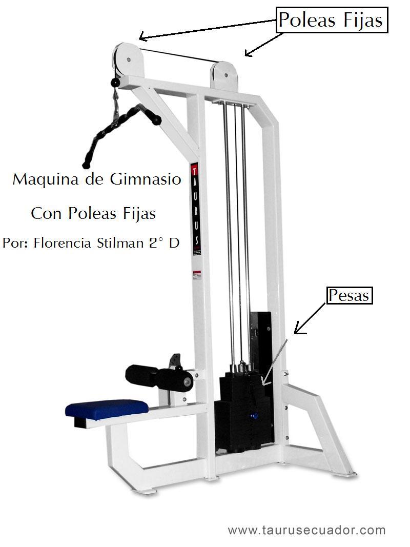 Por qu no pensar que otra metodolog a es posible alan for Poleas para gimnasio